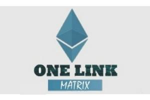 one link matrix review