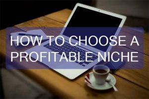 Choose a Profitable Niche